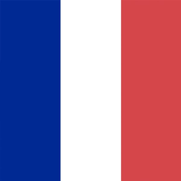 Francuski  jezik